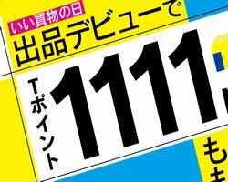 1111-02